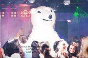 Поздравление на Новый Год-Белый Медведь