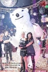 Поздравление с Днем Рождения от Белого Медведя высотой 3м Днепропетровс