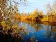 УЧАСТКИ ПО 20 СОТОК (ГОСАКТ) на реке ОРЕЛЬ (свой берег - 25м).
