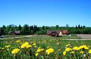 Участок с домом в Латвии (ИЖС,  ВНЖ)