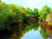 Участки 6;  10;  20 соток на реке ОРЕЛЬ(100м)