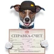 оформление СПРАВКИ-СЧЕТА!!!!