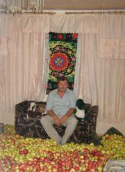 Продам дом в Николаевке Днепропетровского района