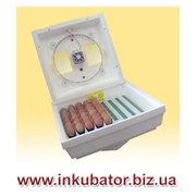 Инкубатор для яиц МИ-30-1-Э цена 780 грн