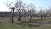 Походы выходного дня в Днепропетровской области