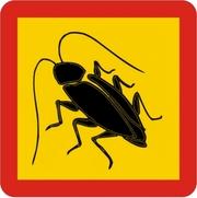 Как избавится от тараканов Днепропетровск