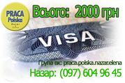 Польская рабочая виза. Пакет документов 2000 грн. от лучших фирм