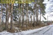 Участки в хвойном и дубовом лесу в Орловщине Новомосковского района