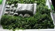 Укроп,  петрушка,  зеленый лук 2 сорт
