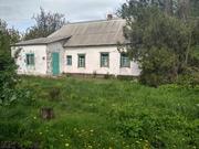 Продам участок земли с домом ( с. Лобойковка,  Петриковский район)