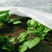Материал для укрытия растений