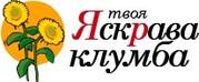 Луковицы весенних цветов от интернет-магазина