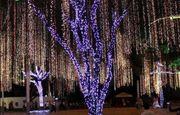 Гирлянды светодиодные новогодние стринг влаго стойкие.