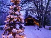 Отдых на Новый Год и Рождество