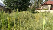 Земельный участок в сосновом лесу на берегу реки Самара.