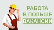 Работа,  трудоустройство в Польше.