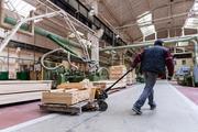 Работник на фабрику по обработке дерева (Польша)