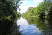 Участки 50 соток;  1ГА(100 соток) на берегу реки Орель.