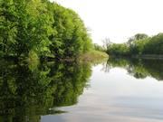 Участки 15;  20 соток на берегу реки Орель(свой берег).